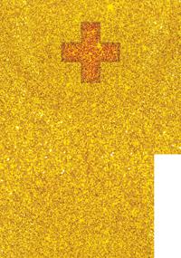 KSCV Gold+ Award